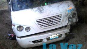 camion agricola Amacueca (2)